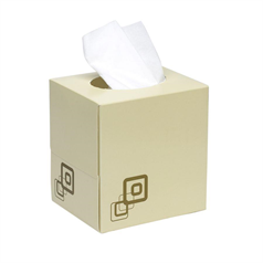 budget tissues, box, strong, soft, facial